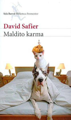 david-safier-maldito-karma-libro