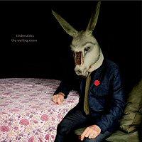 tindersticks-the-waiting-room-album