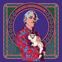 robyn-hitchcock-2017-album