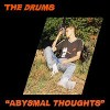 the-drums-abysmal-thoughts-album