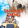 the-shaggy-dog-poster