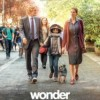wonder-cartel-espanol