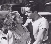 coleen gray gallery galeria foto tyrone power