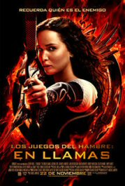 los juegos del hambre hunger games catching fire movie poster pelicula review cartel
