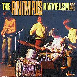 animals-animalism-discos