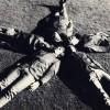 phil-frantics-banda-garaje-rock-60s