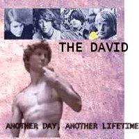 the-david-album