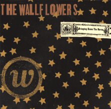the-wallflowers-discos