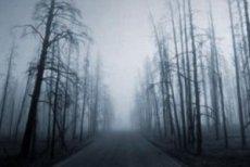 cormac-mccarthy-la-carretera-libro-critica