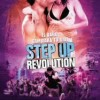 step-up-revolution-cartel-espanol