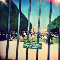 tame-impala-lonerism-disco