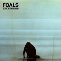 foals what went down album disco