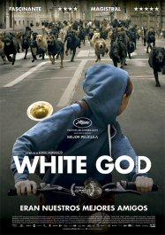 whitegodcartel