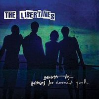 the libertines anthems for doomed youth disco