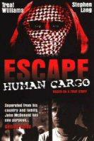 escape-human-cargo-poster