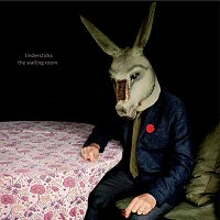 tindersticks-the-waiting-room-album