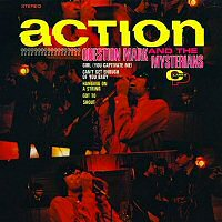 question-mark-and-the-mysterians-action