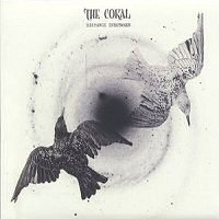the-coral-distance-inbetween-album