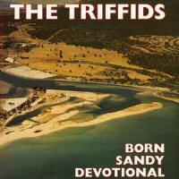 triffids-born-sandy-devotional