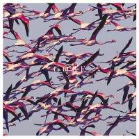 deftones-gore-album