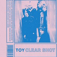 toy-clear-shot-discos