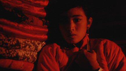 sorgo-rojo-quinta-generacion-china