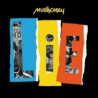 mudhoney-lie-album