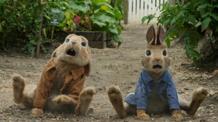 foto peter rabbit película en taquilla