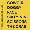 thirty-seconds-to-mars-america-album