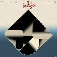 wild-nothing-indigo-discos
