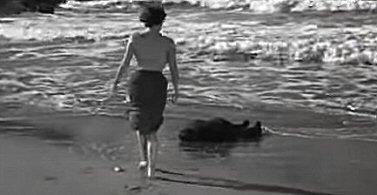 playa-prohibida-foto-critica-pelicula