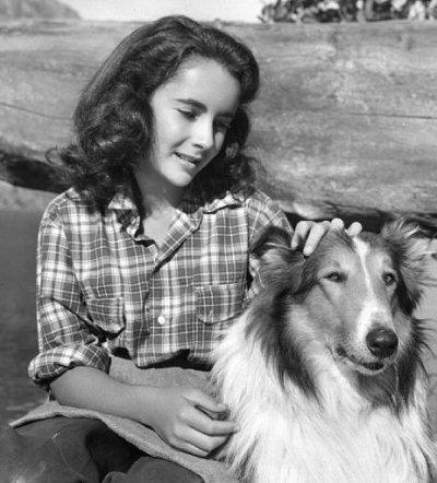 lassie-peliculas