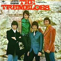 the-tremeloes-here-come-1967-albums