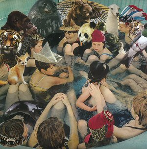 panda-bear-animal-collective-albums