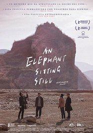 elephant-sitting-still-cartel-estrenos