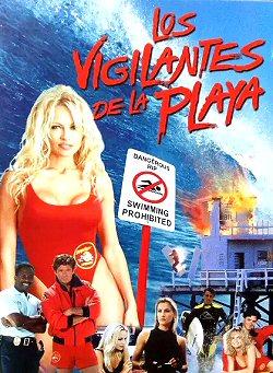 losvigilantes-playa-dvd-sinopsis