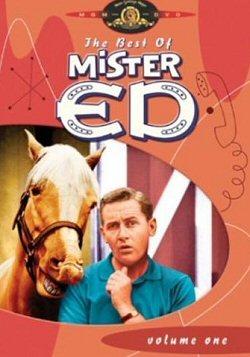 mister-ed-sinopsis-datos-tv