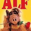 alf-serie-cartel