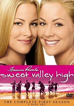 gemelas-sweet-valley-dvd-cartel-sinopsis
