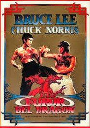 elfuror-del-dragon-cartel-artes-marciales-critica