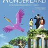 the-wonderland-cartel-sinopsis-anime-japones