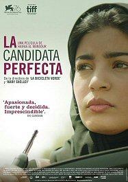 candidata-perfecta-cartel-sinopsis