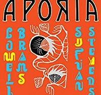 sufjan-stevens-aporia-album-novedades