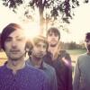 elephant-stone-hollow-album-review-fotos