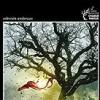john-connolly-la-mujer-del-bosque-sinopsis-novelas