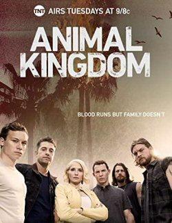 animal-kingdom-poster-serie
