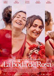 boda-de-rosa-cartel-sinopsis