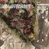 hp-lovecraft-album-review-1967