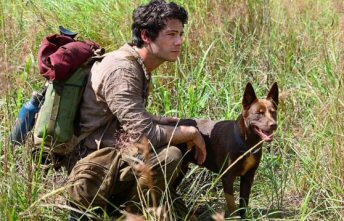 deamor-y-monstruos-review-critica-dylan-obrien