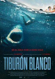 tiburon-blanco-2021-poster-sinopsis